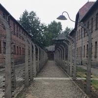 Auschwitz: uma visita emocionante