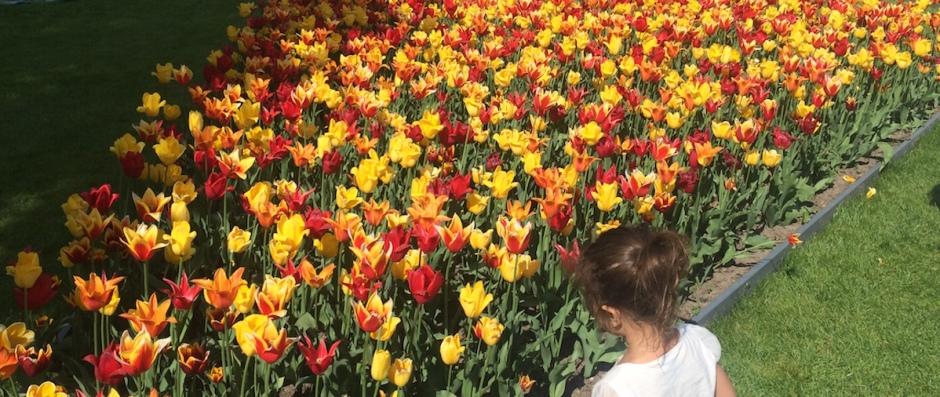 Britzer Garten Berlin